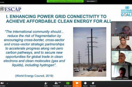 Dyah Roro Esti Bicara Energi Baru Terbarukan di Sidang Virtual PBB