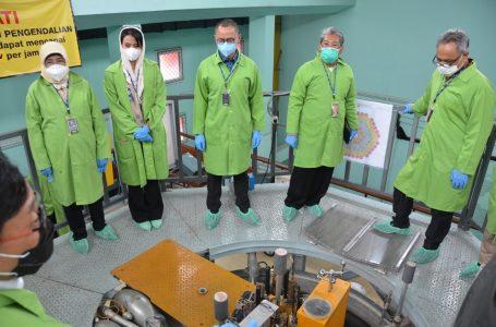 Penjelasan BATAN Soal Pemanfaatan Teknologi Nuklir untuk Lingkungan