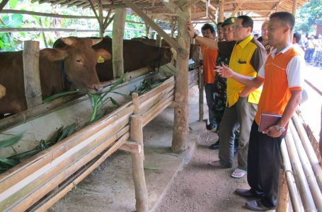 Firman Soebagyo: Pemerintah Harus Mewaspadai Pihak yang Bermain Dibalik Aksi Mogok Pedagang Daging Sapi