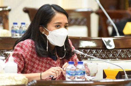 Puteri Komarudin Berhasil Loloskan Tiga Proposal Indonesia Sebagai Delegasi Y20 Summit 2021